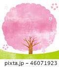 桜 桜の木 木のイラスト 46071923