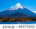 富士山 精進湖 秋の写真 46073042