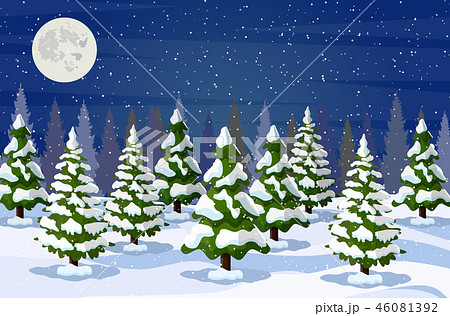 Winter landscape with white pine trees on snow 46081392