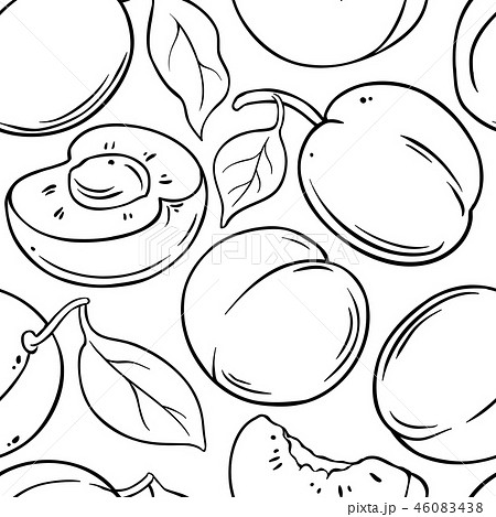 apricot fruit vector pattern 46083438