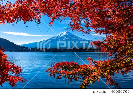 《山梨県》富士山と紅葉 46086709