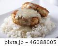 カツレツ 食 料理の写真 46088005