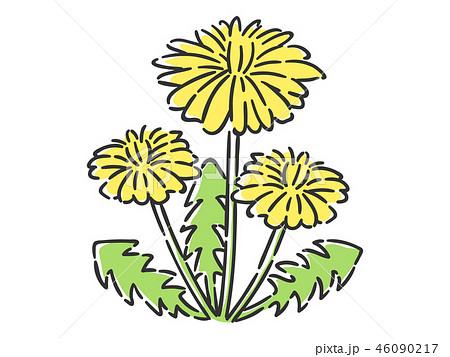 春の花 たんぽぽ 46090217