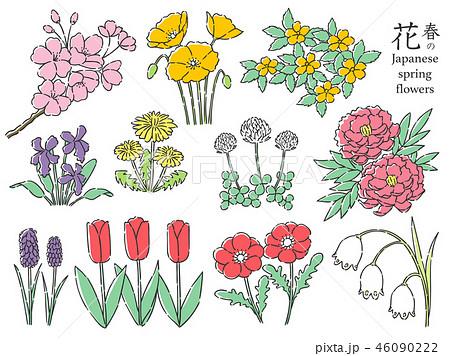 春の花 セット 46090222