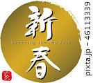 新春 亥 筆文字のイラスト 46113339