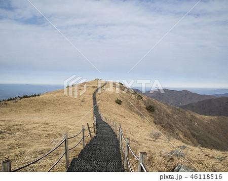 小白山 国立公園 丹陽郡の写真素材 [46118516] - PIXTA