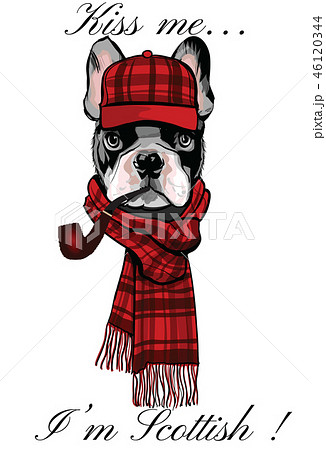 French buldog with a scottish cap and a pipe 46120344