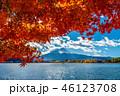 湖 河口湖町 紅葉の写真 46123708