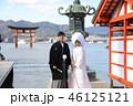 神前結婚式 46125121