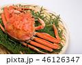 蟹 セイコカニ セコカニ コッペカニ 食材 46126347