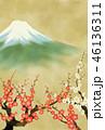 満開の梅と富士山 46136311