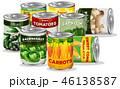 ベクター ベジタブル 野菜のイラスト 46138587