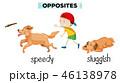 ENGLISH イングリッシュ 英語のイラスト 46138978