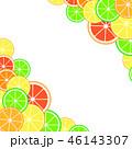 くだもの フルーツ 実のイラスト 46143307