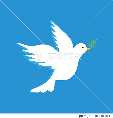 white peace dove with branch on blue background 46146163