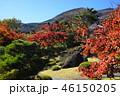 風景 箱根美術館 紅葉の写真 46150205