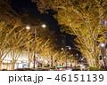 表参道 イルミネーション 電飾の写真 46151139