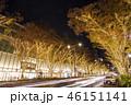 表参道 イルミネーション 電飾の写真 46151141