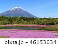 本栖湖リゾート 富士山 芝桜の写真 46153034