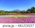 本栖湖リゾート 富士山 芝桜の写真 46153037