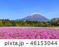 本栖湖リゾート 富士山 芝桜の写真 46153044