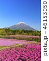 本栖湖リゾート 富士山 芝桜の写真 46153050