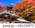 高尾山 秋 薬王院の写真 46159675
