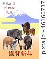 2019年賀 イノシシ 4種 富士山 46160737
