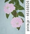 椿の絵 46168026