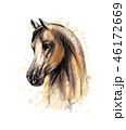 Horse head portrait from splash of watercolors. Hand drawn sketch 46172669