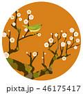 梅にうぐいす 46175417