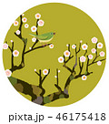 梅にうぐいす 46175418
