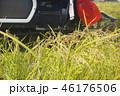 稲の獲り入れ 46176506