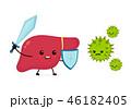 肝臓 健康 ヘルシーのイラスト 46182405