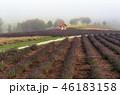 景色 風景 野原の写真 46183158