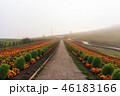 景色 風景 農園の写真 46183166