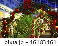 クリスマスの飾り付けイメージ 46183461