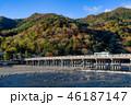 嵐山 紅葉 渡月橋の写真 46187147