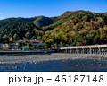 嵐山 紅葉 渡月橋の写真 46187148