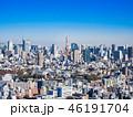東京 都市風景 東京タワーの写真 46191704