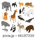 動物 アイソメトリック アイソメのイラスト 46197330