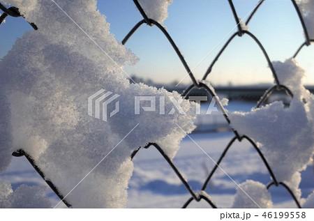 雪が降る公園のフェンス、網、ネット、一面に広がる白い雪、冬の雪景色、群馬県高崎市 46199558