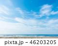 [愛知県] 千鳥ケ浜 46203205