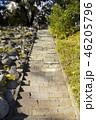 小石川後楽園 晴れ 石段の写真 46205796