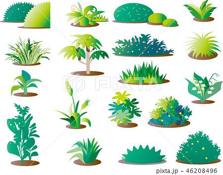 草, パーツ, 背景素材, 緑, 白バック, 草のカット, 素材集, セット, 草のセット, 葉, コピースペース, ベクターイラスト, イラスト, 植物, 背景, 自然, 素材, バックグラウンド, 緑色, イラスト集, 木, ワンポイントイラスト, バリエーション, 複数, ベクター, 雑草, 新緑  タグ変更