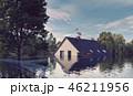 樹木 樹 ツリーのイラスト 46211956