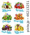 食 料理 食べ物のイラスト 46213251