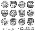 バスケ バスケットボール スポーツのイラスト 46213313