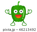 野菜 ベクター キャラクターのイラスト 46213492