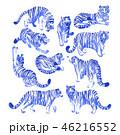 タイガー トラ 虎のイラスト 46216552